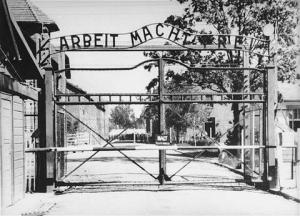 haunting-pictures-of-auschwitz-concentration-camps_xcx_frmimg_1348798551-4498