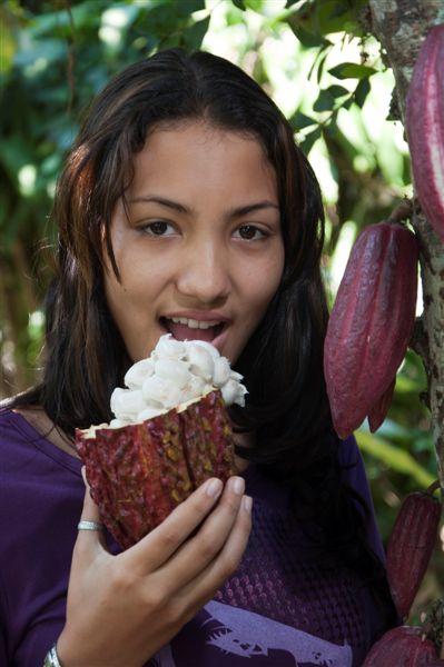 rey-del-cacao-81